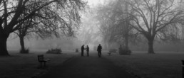 Still Black and white image of London park in the fog